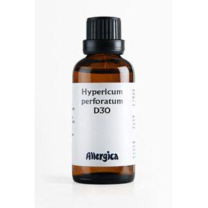 Hypericum_perforatum_D30