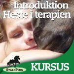 Introduktion til _Hestekræfter i terapien og rideterapi