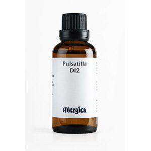 Pulsatilla_D12
