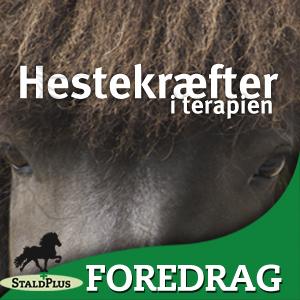 Foredrag_Hestekræfter i terapien, Gitte Sperling fortæller om terapi med heste