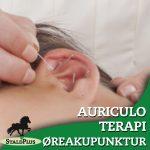 auriculo øreakupunktur på klinikken hos Stald Plus