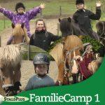 Sommerens familiecamp 1 - med islandske heste for hele familien