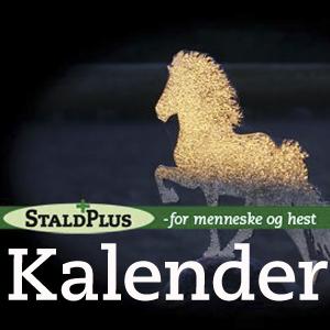 KØB Stald Plus vægkalender med citater og ord om dig og de islandke heste
