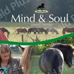 Retreat med heste, mind& soul i sommerferien