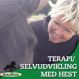 Selvudvikling /terapi med hest hos Stald Plus