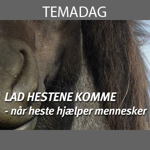 Temadag-heste og mennesker